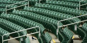Empty seats, Salt River Fields