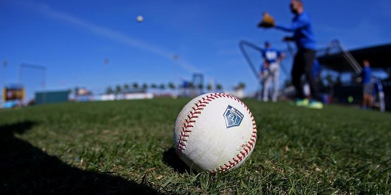 MLB, Logo, spring training